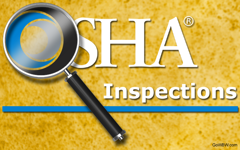 Food Health Inspector Qualifications