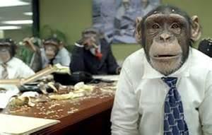 dysfunctional meetings