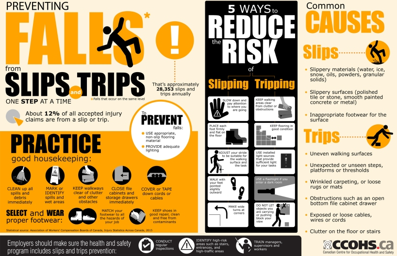 Preventing Falls From Slips Amp Trips Infographic Ehs